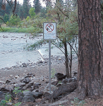 Sewage from houses and businesses can mix with storm runoff from streets, then pass to the Spokane River.